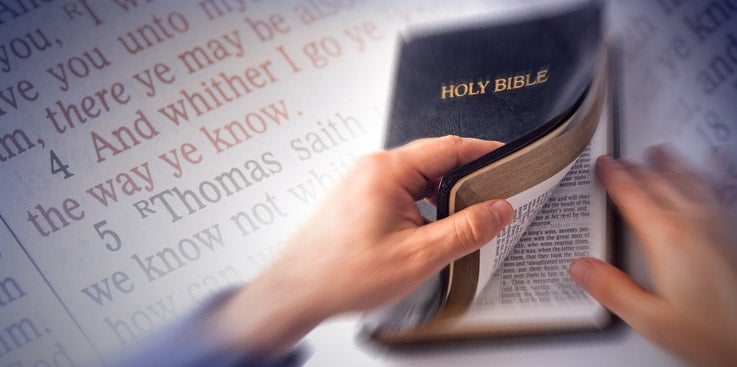 The State of the Bible