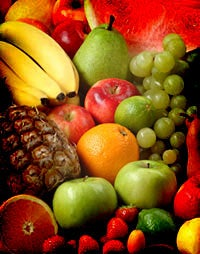 2009: A Phenomenal Multiplying of Fruit