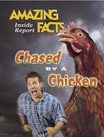 Chased by a Chicken