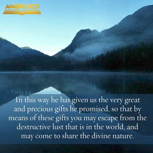 2 Peter 1:4 - This Scripture Picture is provided courtesy of Amazing Facts.  Visit us at www.amazingfacts.org