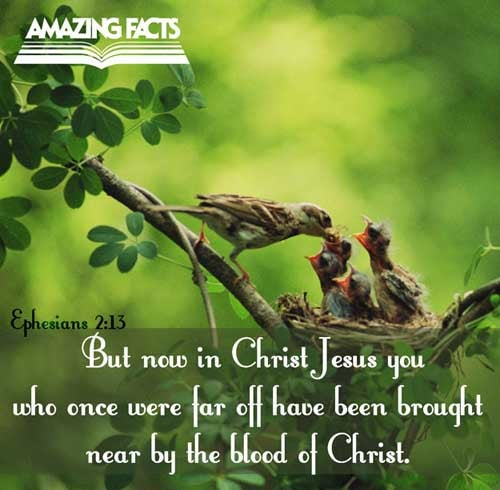 Ephesians 2:13 - This Scripture Picture is provided courtesy of Amazing Facts.  Visit us at www.amazingfacts.org