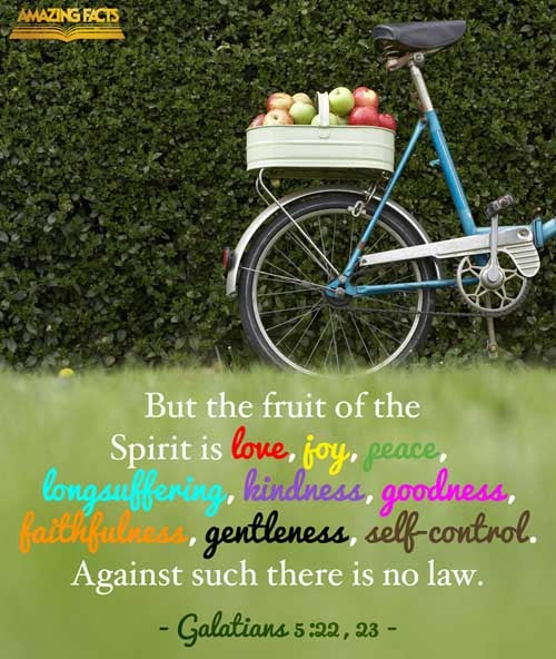 But the fruit of the Spirit is love, joy, peace, longsuffering, gentleness, goodness, faith,  Meekness, temperance: against such there is no law.  Galatians 5:22-23
