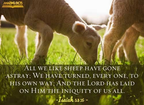 All we like sheep have gone astray; we have turned every one to his own way; and the LORD hath laid on him the iniquity of us all. 