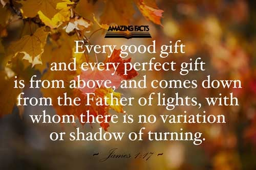 Every good gift and every perfect gift is from above, and cometh down from the Father of lights, with whom is no variableness, neither shadow of turning. 