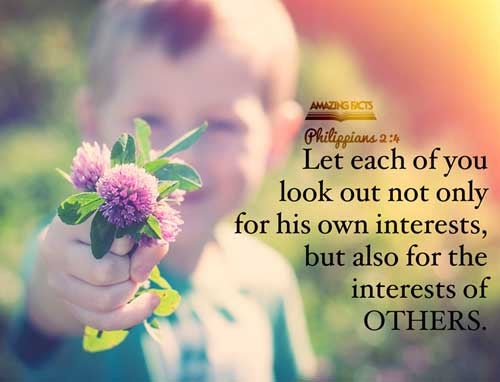 Look not every man on his own things, but every man also on the things of others. 