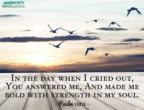 Psalms 138:3 - This Scripture Picture is provided courtesy of Amazing Facts. Visit us at www.amazingfacts.org