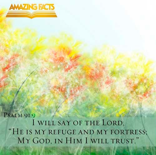 Psalms 91:9 - This Scripture Picture is provided courtesy of Amazing Facts.  Visit us at www.amazingfacts.org