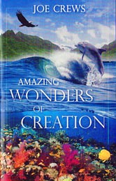 Amazing Wonders of Creation