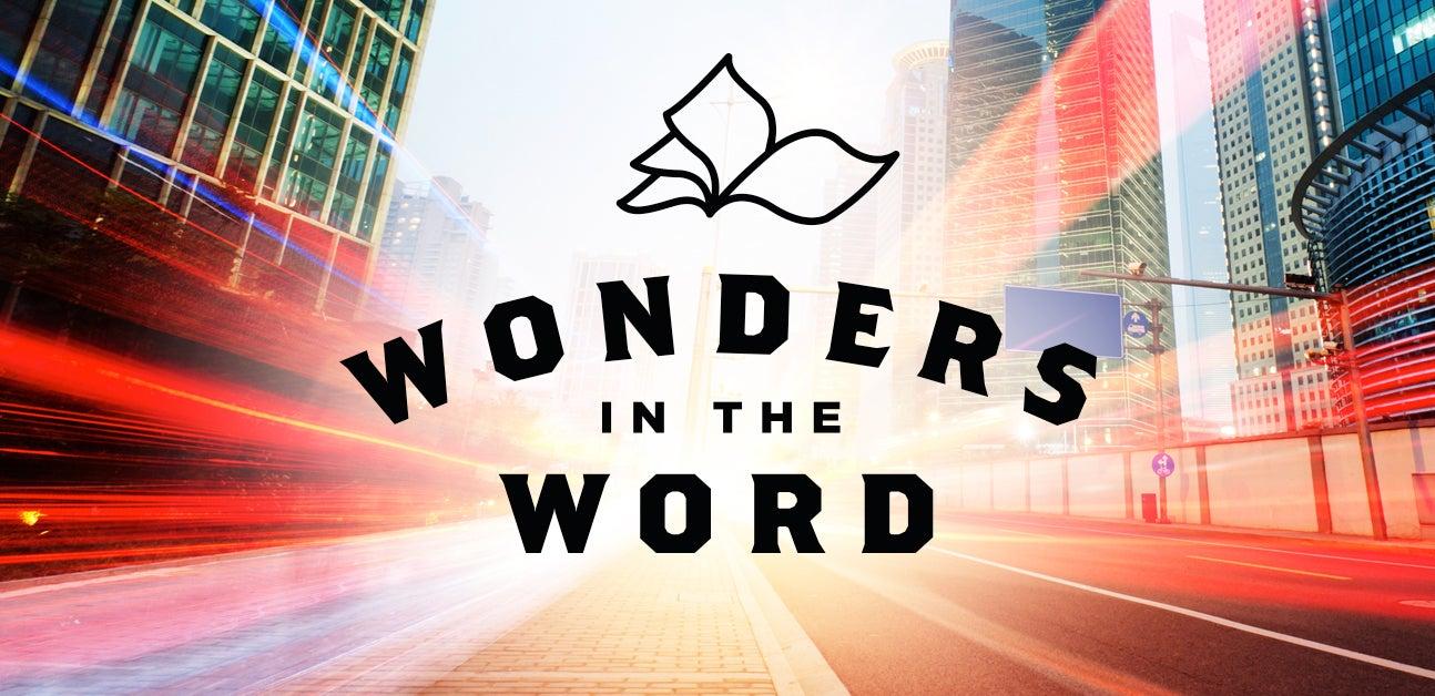 Wonders In The Word