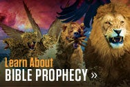 Find Prophecy Seminars in your area