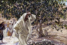 Las Hojas de Higuera y los Fariseos - The Accursed Fig Tree - James Tissot (1836 - 1902)