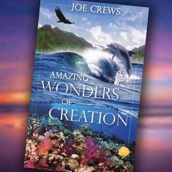 Amazing Wonders of Creation - Paper or Digital Download
