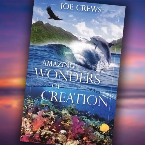 Amazing Wonders of Creation - Paper or Digital Download