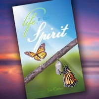 Life in the Spirit - Paperback or Digital PDF