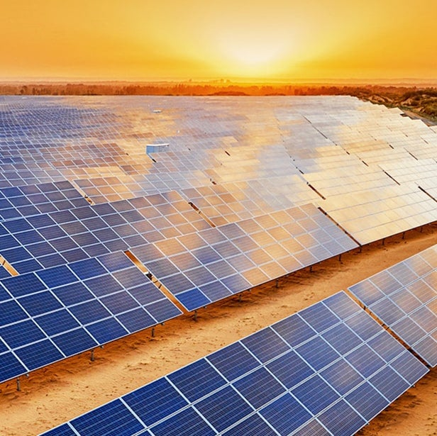 Some believe that filling up the entire Sahara Desert with solar panels could ...