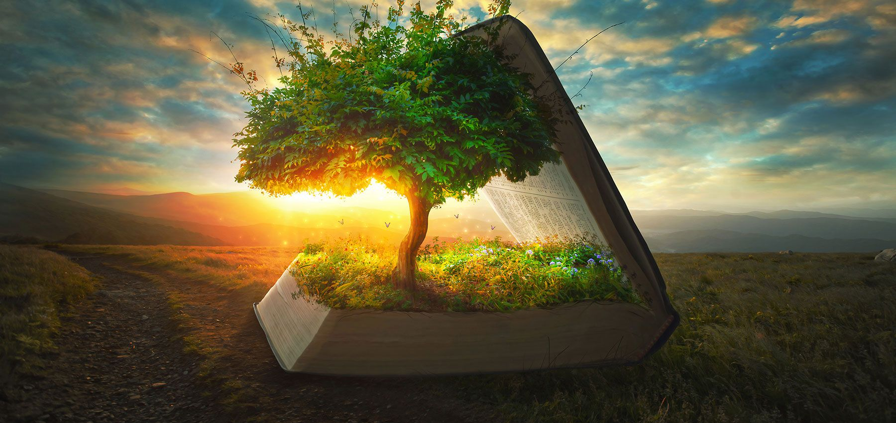10 Great Tools for Your Spiritual Growth   News   Amazing Facts