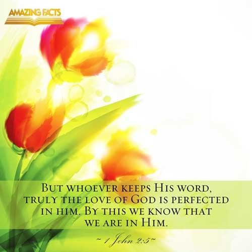 1 John 2:5
