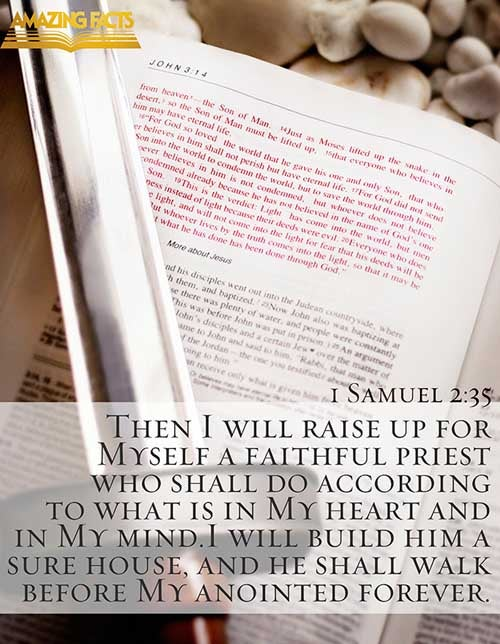 1 Samuel 2:35