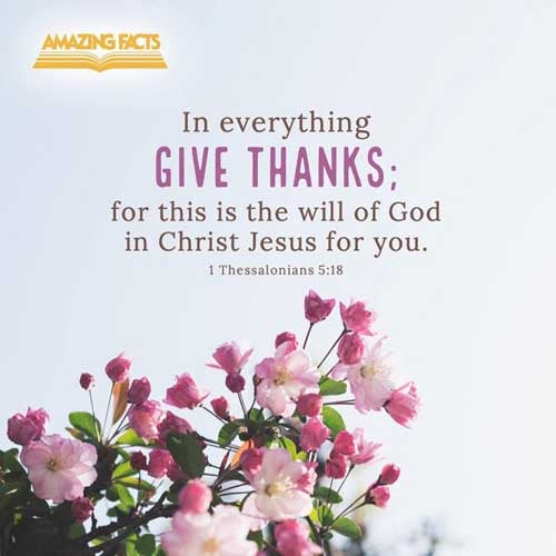 In every thing give thanks: for this is the will of God in Christ Jesus concerning you. 1 Thessalonians 5:18