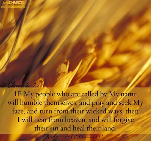 Scripture Pictures By Verse