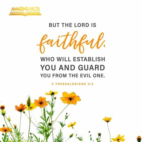 But the Lord is faithful, who shall stablish you, and keep you from evil. 