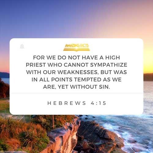 Hebrews 4:15