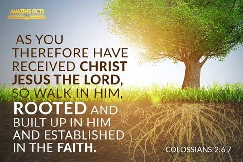 As ye have therefore received Christ Jesus the Lord, so walk ye in him:  Rooted and built up in him, and stablished in the faith, as ye have been taught, abounding therein with thanksgiving. Colossians 2:6-7