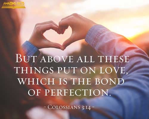 And above all these things put on charity, which is the bond of perfectness. Colossians 3:14