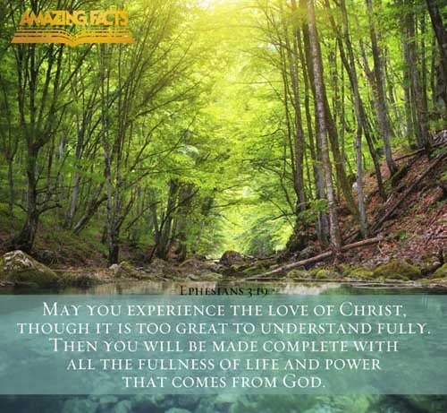 Ephesians 3:19
