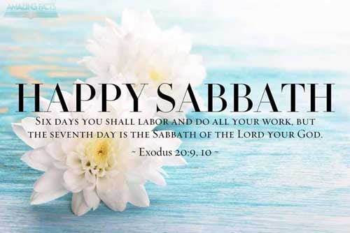 Six days shalt thou labour, and do all thy work:  But the seventh day is the sabbath of the LORD thy God: in it thou shalt not do any work, thou, nor thy son, nor thy daughter, thy manservant, nor thy maidservant, nor thy cattle, nor thy stranger that is within thy gates: 