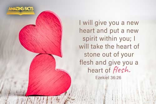 A new heart also will I give you, and a new spirit will I put within you: and I will take away the stony heart out of your flesh, and I will give you an heart of flesh. 