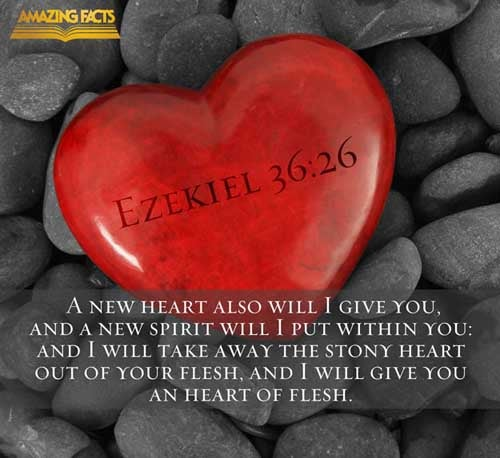 Image result for pic Ezekiel 36:26