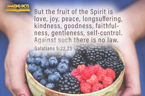 But the fruit of the Spirit is love, joy, peace, longsuffering, gentleness, goodness, faith,  Meekness, temperance: against such there is no law. 