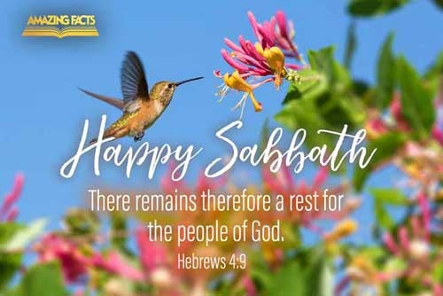 There remaineth therefore a rest to the people of God. 