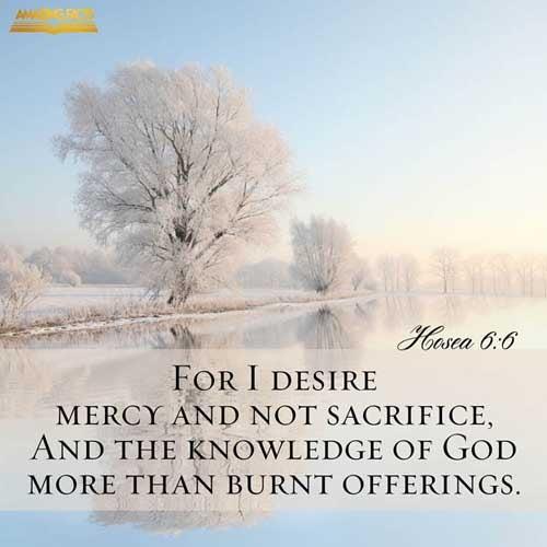 Hosea 6:6