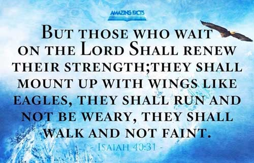But they that wait upon the LORD shall renew their strength; they shall mount up with wings as eagles; they shall run, and not be weary; and they shall walk, and not faint. 