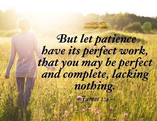 But let patience have her perfect work, that ye may be perfect and entire, wanting nothing. 