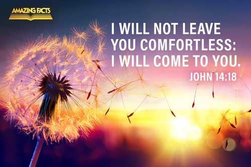 I will not leave you comfortless: I will come to you. 