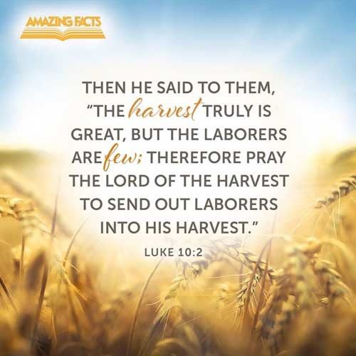 Therefore said he unto them, The harvest truly is great, but the labourers are few: pray ye therefore the Lord of the harvest, that he would send forth labourers into his harvest. 