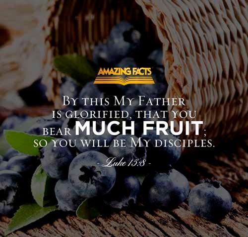 Luke 15:8