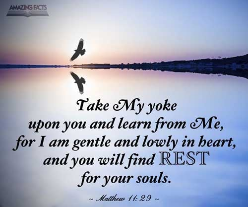 Take my yoke upon you, and learn of me; for I am meek and lowly in heart: and ye shall find rest unto your souls. 