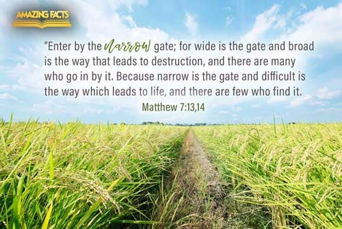 Enter ye in at the strait gate: for wide is the gate, and broad is the way, that leadeth to destruction, and many there be which go in thereat:  Because strait is the gate, and narrow is the way, which leadeth unto life, and few there be that find it. 