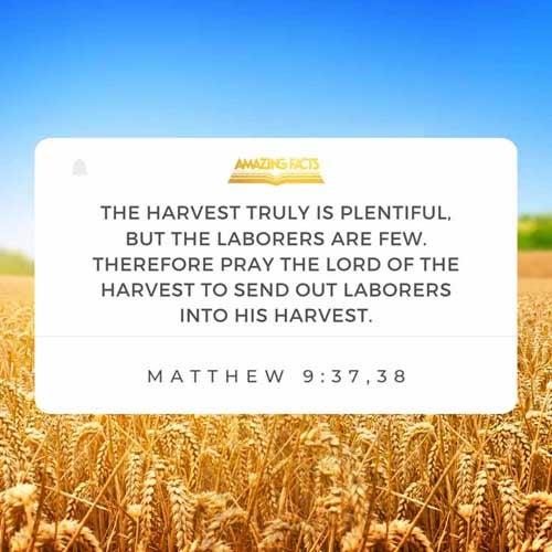 Matthew 9:37-38