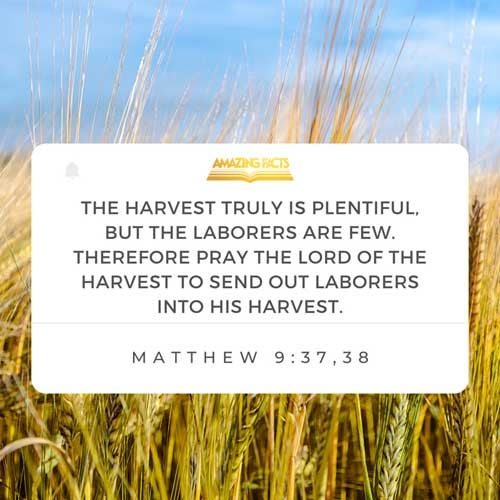 Then saith he unto his disciples, The harvest truly is plenteous, but the labourers are few;  Pray ye therefore the Lord of the harvest, that he will send forth labourers into his harvest. 