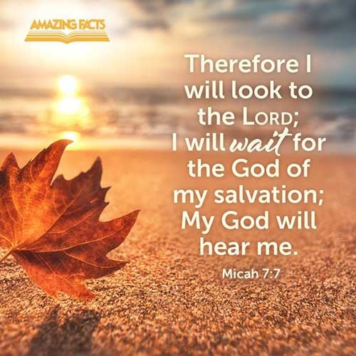 Therefore I will look unto the LORD; I will wait for the God of my salvation: my God will hear me. 