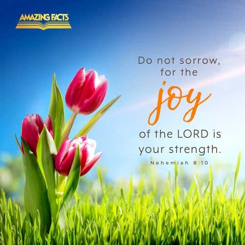 Then he said unto them, Go your way, eat the fat, and drink the sweet, and send portions unto them for whom nothing is prepared: for this day is holy unto our LORD: neither be ye sorry; for the joy of the LORD is your strength. Nehemiah 8:10