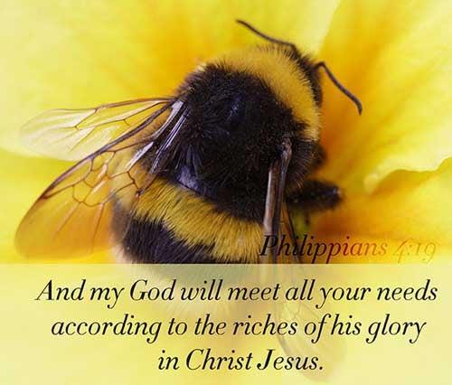 Philippians 4:19