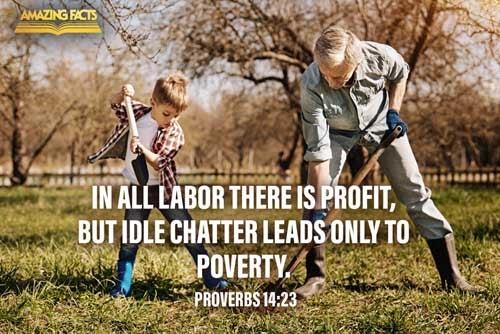 Proverbs 14:23