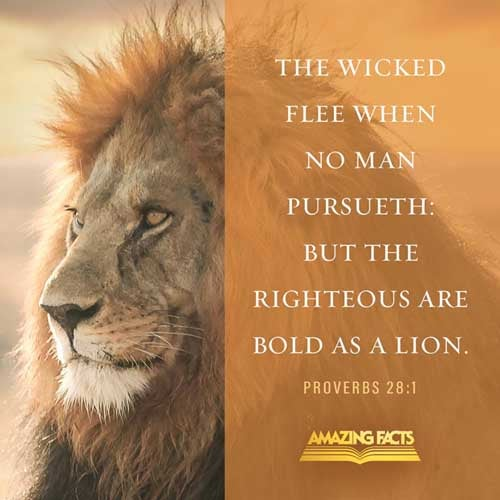 The wicked flee when no man pursueth: but the righteous are bold as a lion. 
