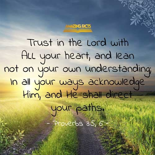 Image result for proverbs 3 5-6